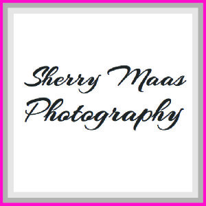 This is Sherry Maas Photography sponsor square.